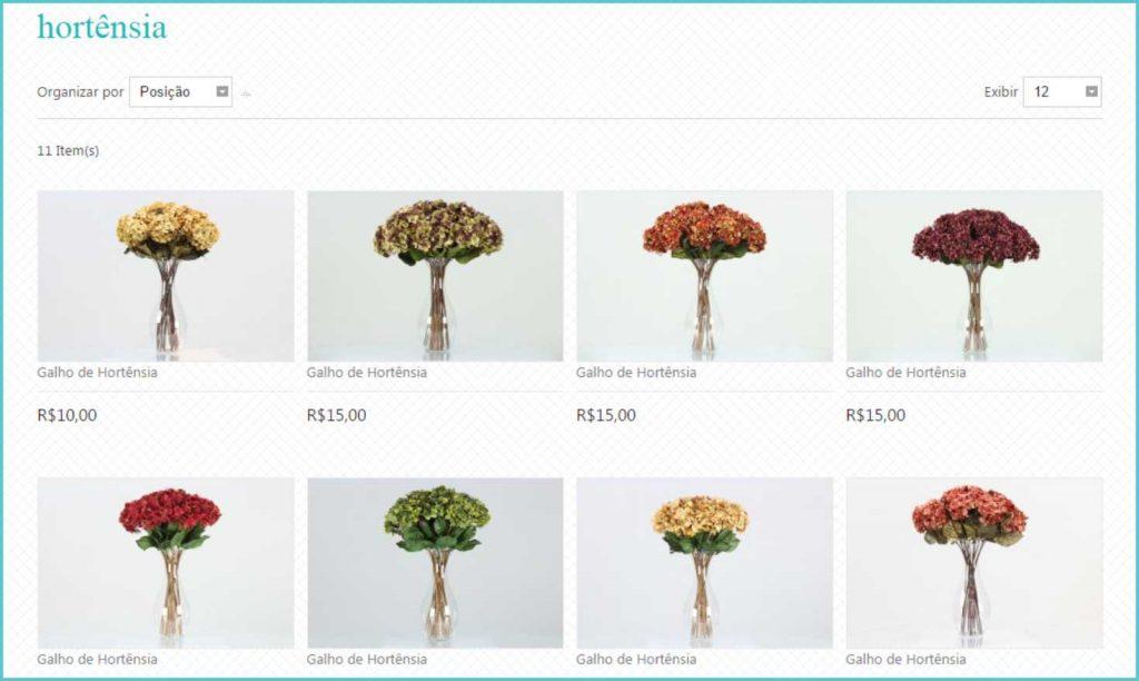 Florae flores permanentes 5