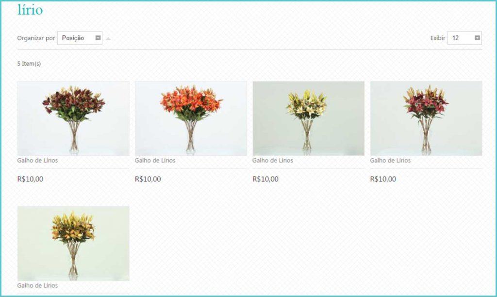 Florae flores permanentes 7