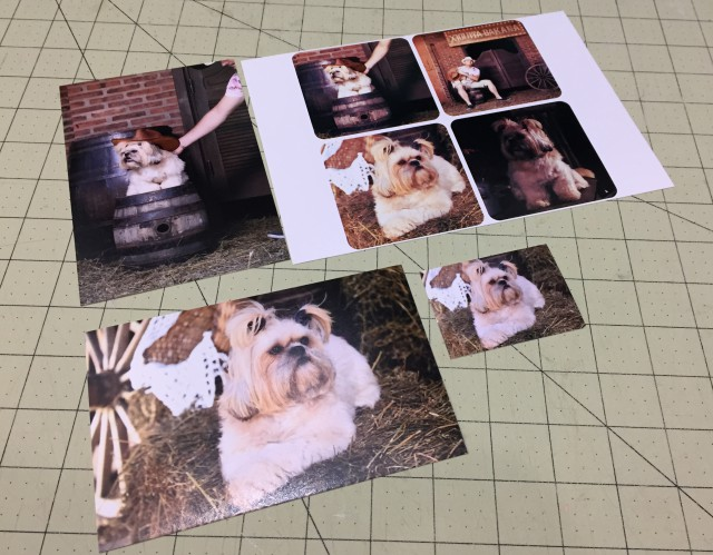 Como revelar foto para scrapbook
